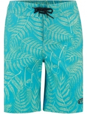 ANIMAL BOYS LAGOONA STRETCH WAIST BOARDSHORTS